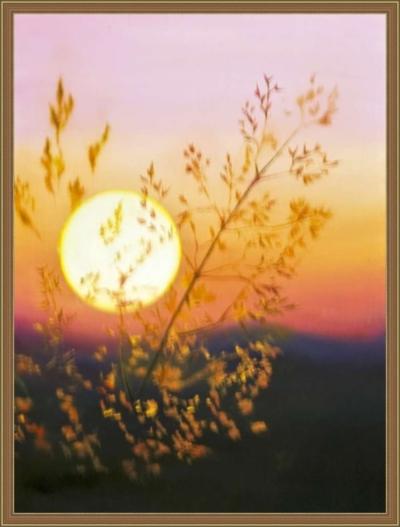 Картина «Солнце» - автор художник Сергей Елизаров, Вид в багетной раме